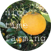 Nice time farming